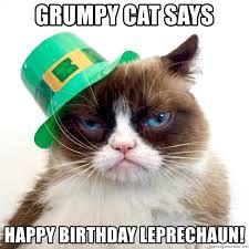 Grumpy Cat Meme Happy Birthday - grumpy cat says happy birthday leprechaun grumpy st patrick s