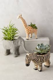 pretty pots abstract succulent planter house design ideas