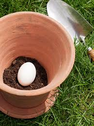 4 steps to starting a vegetable garden a natural eggs and pots