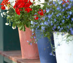 easy and elegant 4th of july decorations all about flowers u2013 our