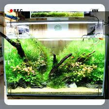10 gallon planted tank led lighting planted tank led lighting mobcart co