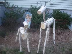 o a outdoor reindeer