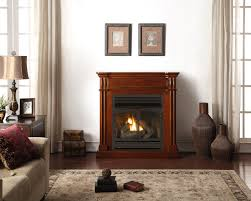 procom 32 u201d zero clearance fireplace insert with remote model