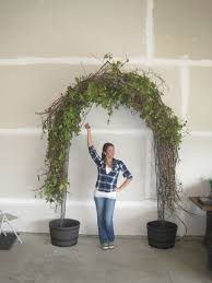 wedding arch grapevine for our wedding we made our wedding arch out of grapevine a