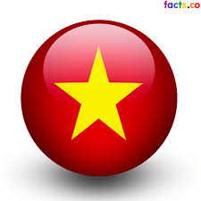 Flag With Red Circle Vietnam Flag Colors Vietnam Flag Meaning History
