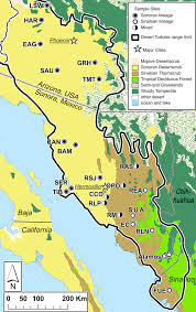 Usa And Mexico Map desert tortoise gopherus morafkai sample locations in