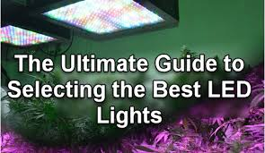Best Led Grow Lights Bestledgrowlights Jpg
