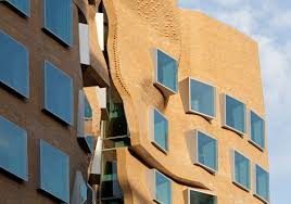 frank gehry divisare