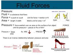 chapter 11 notes forces in fluids ppt video online download