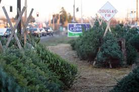 Pacific Northwest Christmas Tree Association - why good christmas trees will be hard to find mnn mother