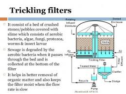 design criteria for trickling filter trickling filters an ideal sewage water treatment solution