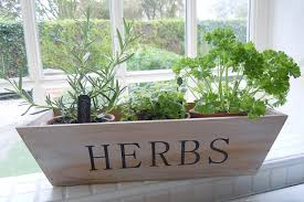 herb pots for windowsill herbs mini wooden crate with 3 terracotta pots amazon co uk