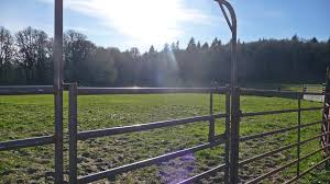 Outdoor Arena Lights by Private Horse Property For Sale In Oregon