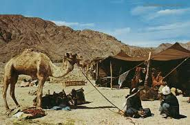 camel tents stlye of a nomad not living in just one spot and always on