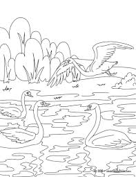 the ugly ducking tale coloring pages hellokids com