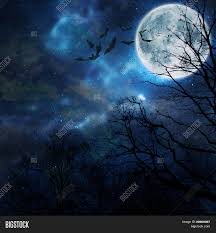 halloween background moon halloween background bats flying in the night with a full moon in