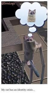Sims Hehehehe Meme - sims logic sims logics pinterest sims funny sims and memes