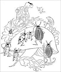 52 coloring pages images coloring book