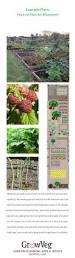 470 best allotments images on pinterest allotment garden
