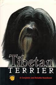 Bangkok Bad Lippspringe Tibet Terrier Zvab