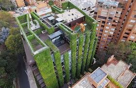 create a building world s largest vertical garden hosts 115 000 plants to create