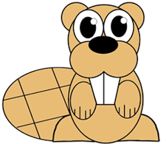 draw cartoon beaver easy step step drawing