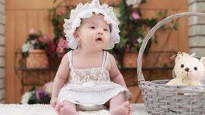 wallpaper cute baby teddy bear basket 5k cute 3560