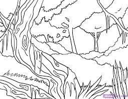 drawn jungle colouring page pencil and in color drawn jungle