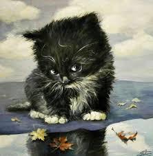 affenpinscher monkey dog 12744670 1218518998175817 2697698651545613023 n jpg кошки
