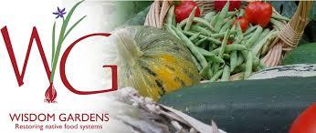 native american food plants wisdom gardens wisdom of the elders inc