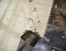 Asbestos In Basement by 17 Best Asbestos Ban In India Images On Pinterest Lungs Fiber