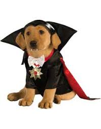 pet costumes buy dog costumes and puppy costumes at guaranteed low