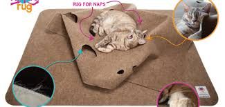 Cats Paw Rug The Ripple Rug Carpet Velcro U003d Successful Product Design For