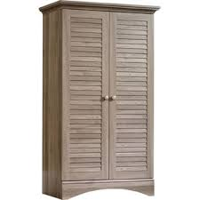 Door Storage Cabinet Cabinets Chests You Ll Wayfair