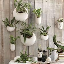 Indoor Hanging Garden Ideas 25 Indoor Garden Ideas Your No 1 Source Of Architecture And