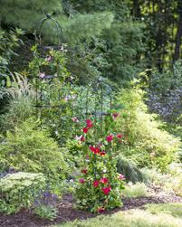 garden obelisk essex round trellis free standing gardeners com