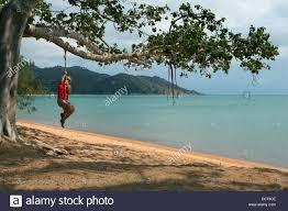 magnetic island beach stock photos u0026 magnetic island beach stock