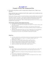 Loan Officer Business Plan Template 30 60 90 Day Business Plan Template Best Business Template