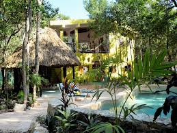 jungle house and bungalow close to tulum with wifi and pool