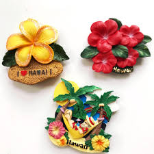 popular hawaii home decor buy cheap hawaii home decor lots from