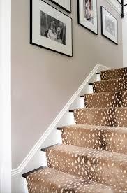 Leopard Print Runner Rug 44 Best Stair Runners Images On Pinterest Stair Runners Stairs