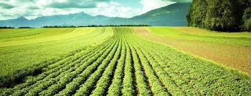 chambre agriculture eure démission avec pertes et fracas de la chambre d agriculture de l