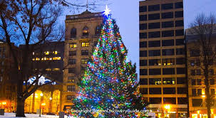 christmas tree lighting near me best things to do in boston in december 2018 boston discovery guide