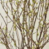 Decorative Branches For Vases Uk Decorative Dried Branches Artificial Natural Branches