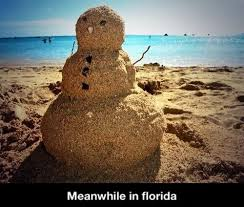Hate Snow Meme - i can t tell you how much i hate florida right now weknowmemes