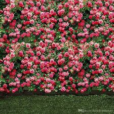 wedding backdrop grass pink flower blossoms wall wedding photo backdrops green lawn floor