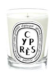 diptyque candle candles baies sale set natcarb org
