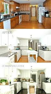 kitchen facelift ideas facelift kitchen cabinets thinerzq me