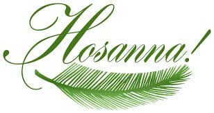 palm leaves for palm sunday palm sunday wallpapers free