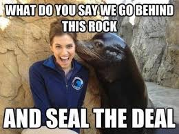 Funny Memes 2016 - seal the deal funny meme funny memes